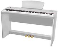 Цифровое пианино Sai Piano P-9WH